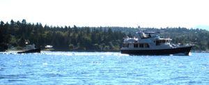fun boat fiber1