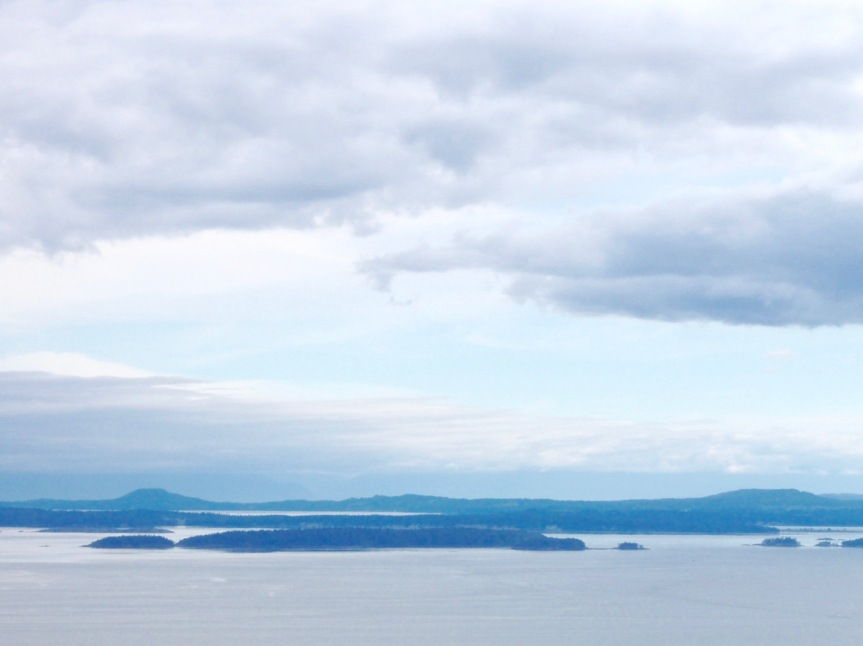 island - 1 (1)