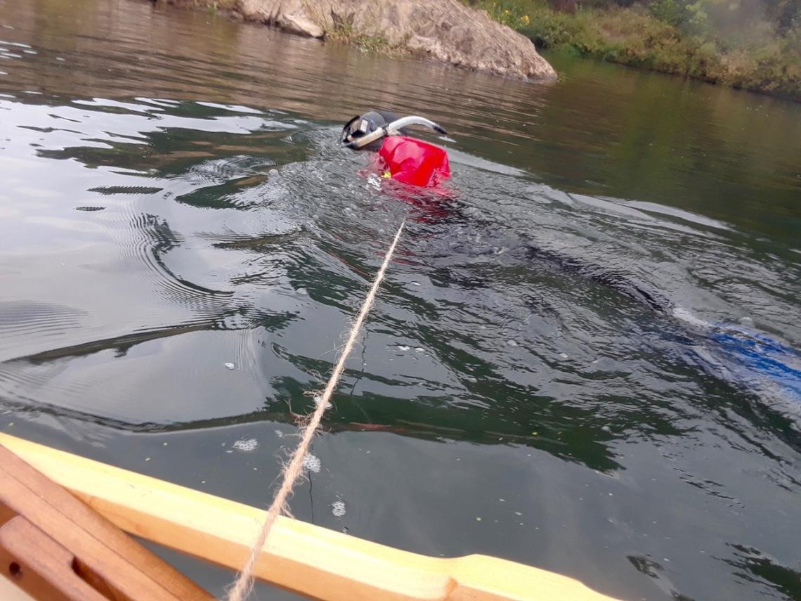 whaling - 3.jpg